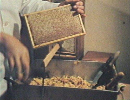 Per noss apiculturs