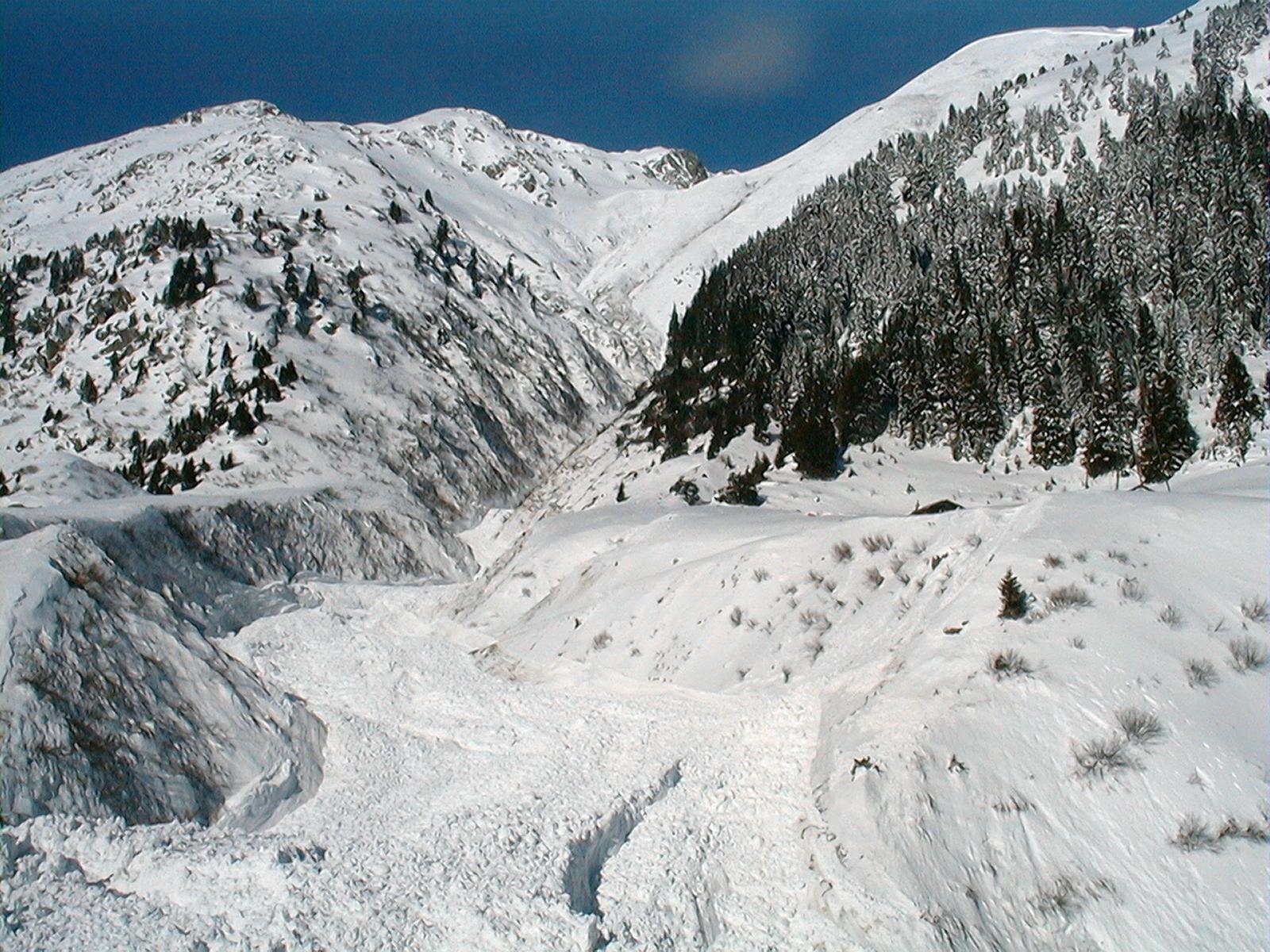 Lavinas en Val Medel