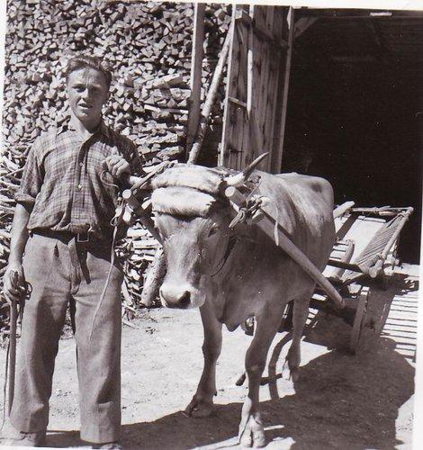 Parsonz - Luigi Bellini-Cajochen 1926-2015