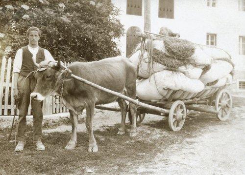 Gugliem Luzzi cun Sarina. ca. 1918